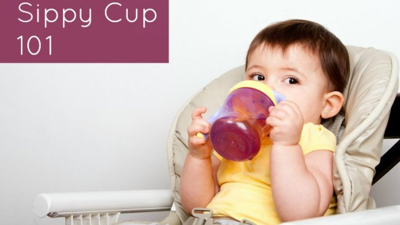 Transitioning Baby to Sippy Cups | Wholesome Baby Food