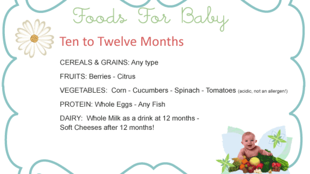 Introducing Solids to Your 10 month to 12 month old Baby, Solid Food Charts  for babies 10 to 12 months old including Meats, Fish, Dairy and more!